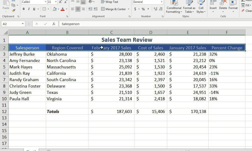 Excel Spreadsheeting Basics – Online  #07398
