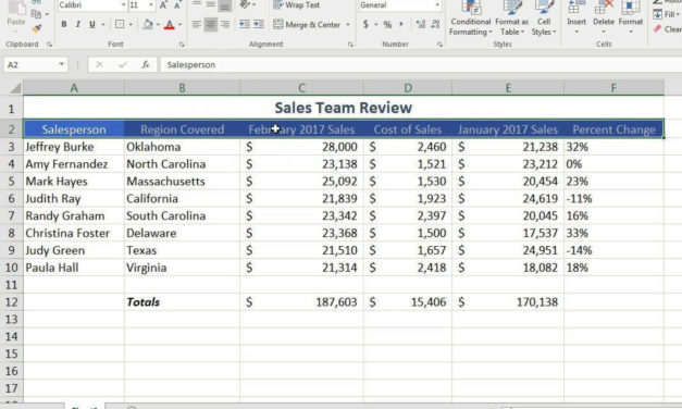 Excel Spreadsheeting Basics – Online  #07398