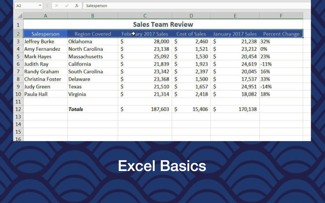 Excel Basics – Week 1