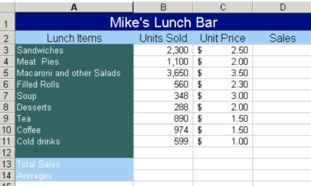 Excel Next Steps – Week 1