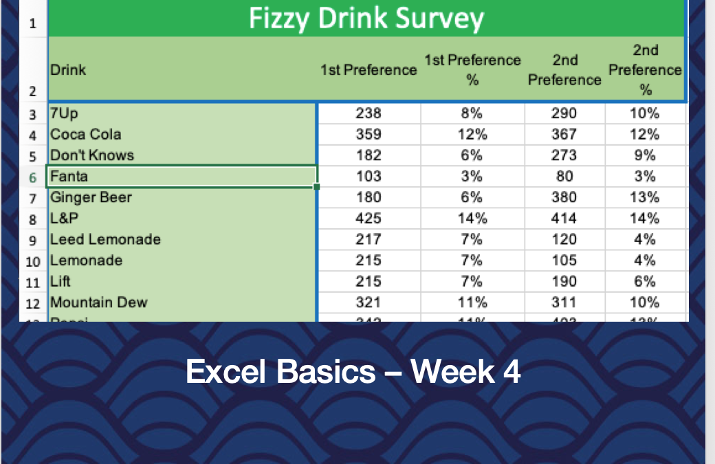 Excel Basics – Week 4