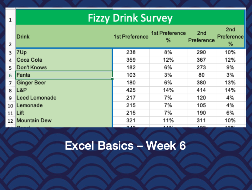 Excel Basics – Week 6