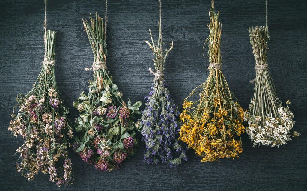 Make a Wildflower Arrangement –  A One Hour workshop
