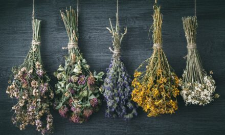 Make a Wildflower Arrangement –  A One Hour workshop